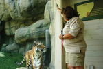 keeper-and-tiger-at-zoo